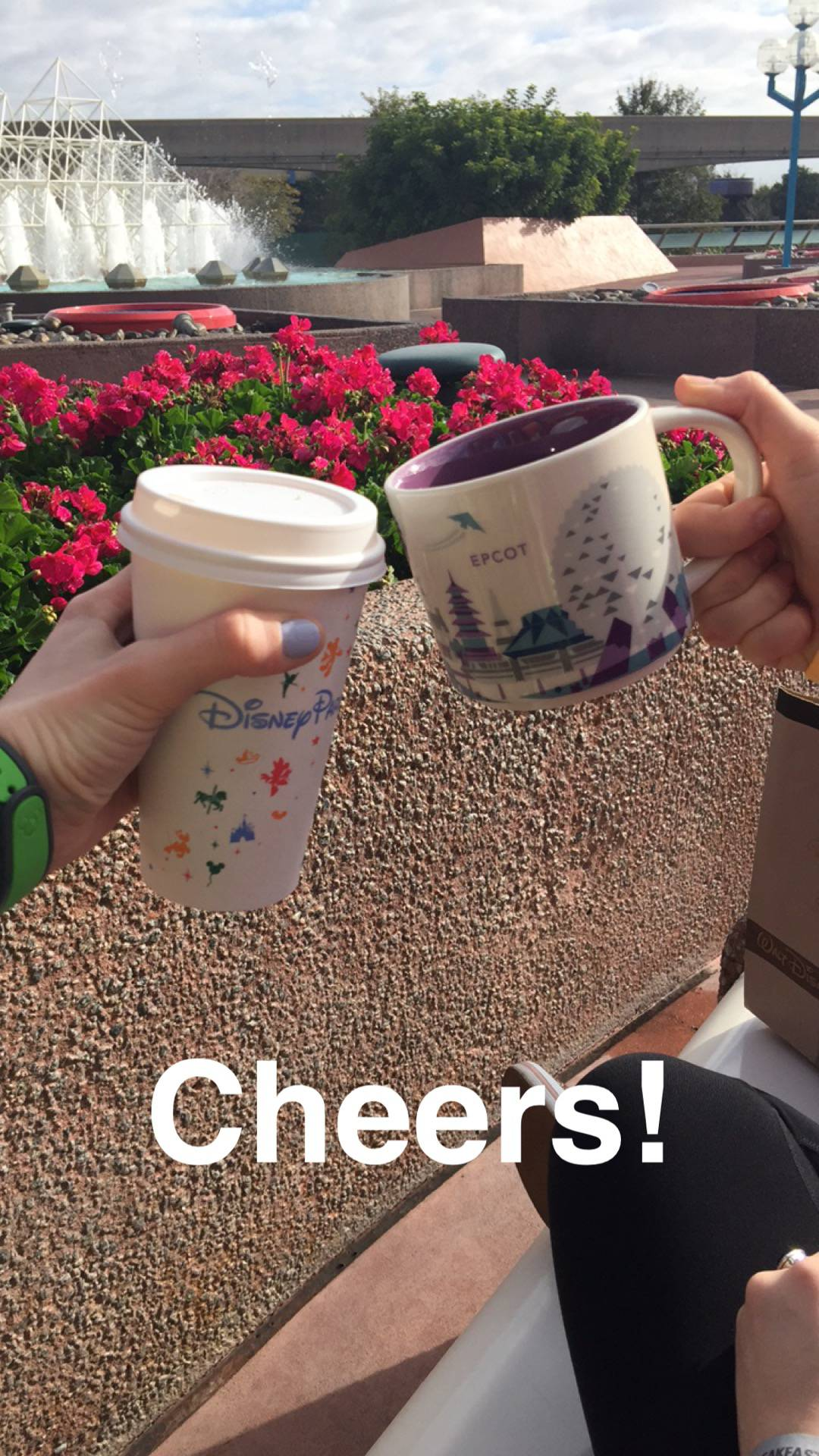 disney parks starbucks cups