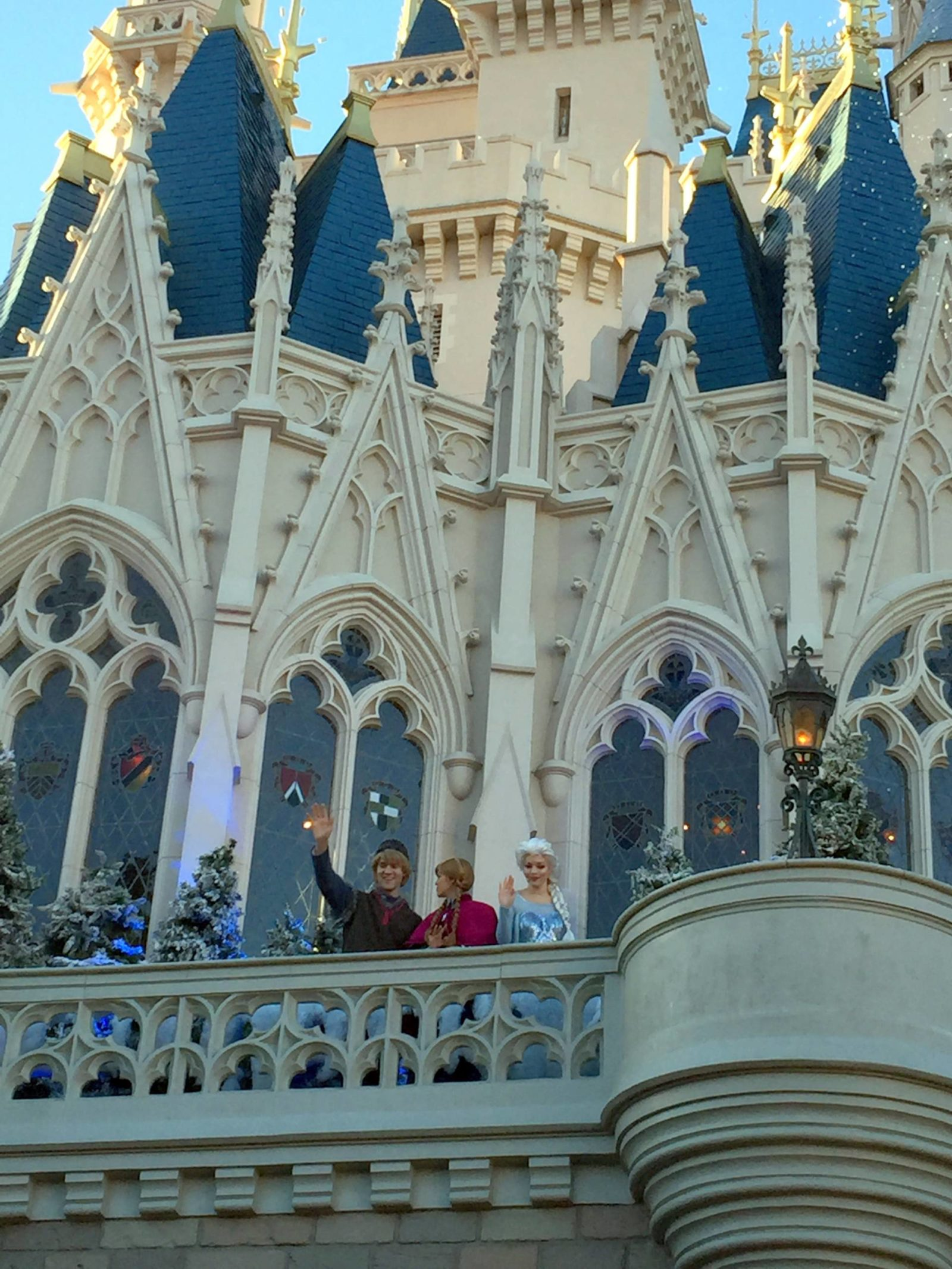 cinderella castle with frozen characters